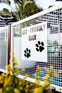 Dog friendly area for pet owners